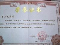 三峡工程特殊贡献奖